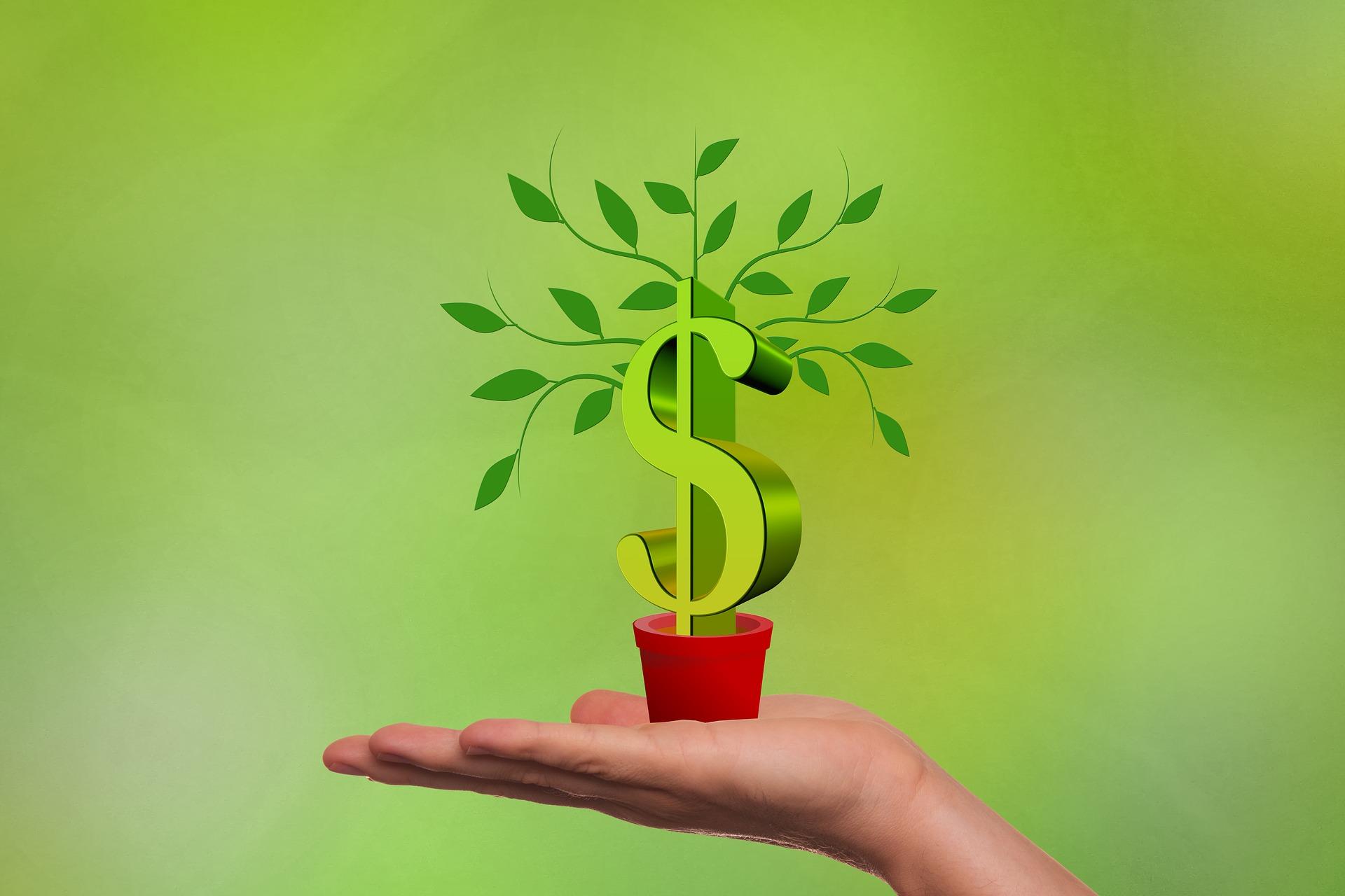 Ein Aktiensparplan Dividende kann wahre Wunder wirken